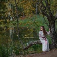 Красота осени :: Ludmila Zinovina