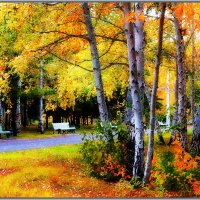 Осень :: Анатолий Фирстов