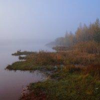 Утро туманное... :: Анатолий