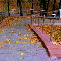 осень в парке :: Александр Прокудин