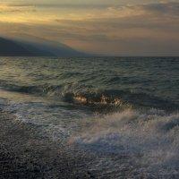 Утренняя волна... :: Андрей Романов
