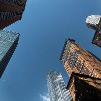 Нью Йорк город хлебный :: meltzer