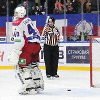 Шайба защитана. :: Лев Мельников