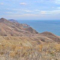 Плюшевые холмы :: Alexandra Shusha
