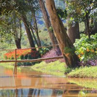 Парк в г.Далат, Вьетнам :: Юрий Поздняк