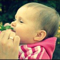 Ребенок :: Анна Бойко
