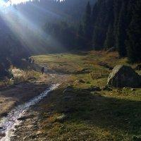 Да будет свет, когда душа во мраке! :: Anna Gornostayeva