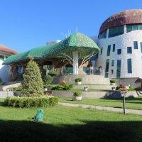 Школа для солнечных детей :: Наталья Джикидзе (Берёзина)