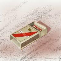 Просто коробок со спичками :: Valentina V.