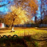 Осень на задворках Ташкента...... :: Людмила Богданова (Скачко)