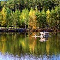 домик для лебедя :: Ольга (Кошкотень) Медведева