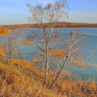 Осень-сибирячка. :: Наталья Юрова