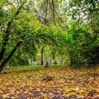 Осень в старом парке. :: Rafael