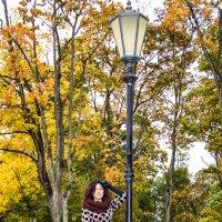 Осень – это феерия и спокойствие. Разноцветная и такая прекрасная она дарит нам умиротворение. :: Viktoria Lashuk