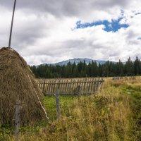 Осень на дворе! :: Борис Кононов