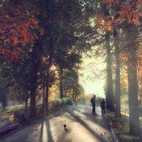 Осенним днем в парке. Заметки фотографа :: Михаил Александров