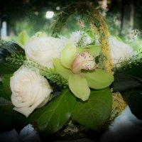 цветы :: Светлана  Тимофеевна