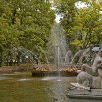 Осень в Петергофе :: Alexandr Zykov