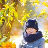 Осень :: Alina Kish