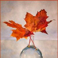 Натюрморт с клёновыми листьями и ягодами боярышника :: Irina-77 Владимировна