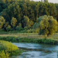 Река Ик :: Георгий Морозов