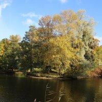 Цветная осень, вечер года - Мне улыбается светло… :: ирина Пронина