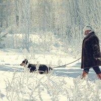 И снова зима. И снова -37... :: Ксения Старикова