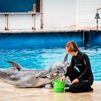 В Севастопольском дельфинарии :: Nyusha