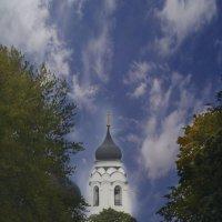 Небесная палитра позитива... :: Tatiana Markova