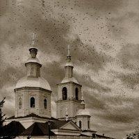 В Дивеево. :: Тамара Бучарская