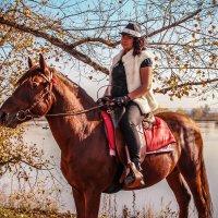 лошадка :: Katerina S.