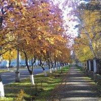 Осень в маленьком городке :: Владимир Звягин