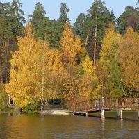 На озере. :: Oleg4618 Шутченко