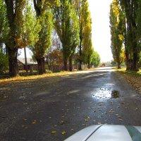 красивая деревня :: aleks