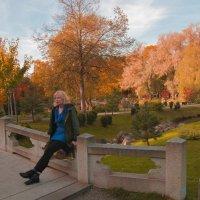 Золотая осень :: Александр Шалабай