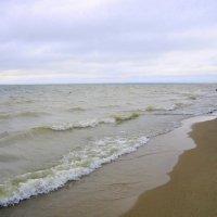 Своенравные волны. :: Мила Бовкун