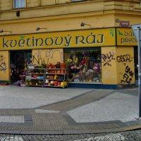 Цветочный магазин. :: Александр TS