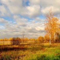 Осень :: Валентина. .