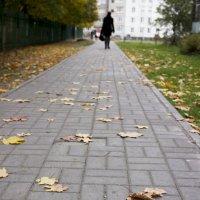 Осень :: Galina Egorova