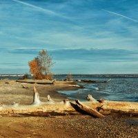 Одинокий пляж :: Дмитрий Конев