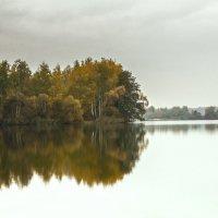 Тишина :: Николай Климович