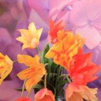 Тюльпаны :: Marina K