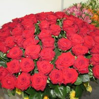 Розы :: Валерий A.