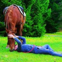 Лошадь, природы созданье чудесное, С тобой единение чувствую тесное... (Вера Вдовина) :: Poliano4ka Poliano4ka