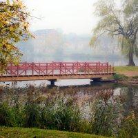 мираж в тумане :: Светлана З