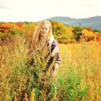 Золотая осень :: Наталья Александрова