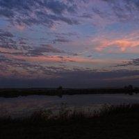 Яркий осенний вечер... :: Ксения Довгопол
