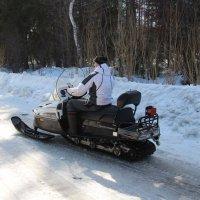 по первому снегу :: Виктор Филиппов