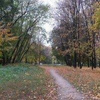 Шуршит октябрь листвой осенней :: Александр Буянов