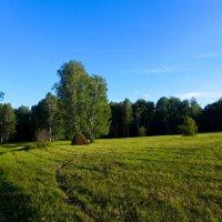 Осенняя идиллия :: Светлана Игнатьева